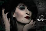 "Meryl Streep strega al cinema con ""Into the Woods"" - Video"