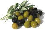Dagli artigiani alle imprese: le olive sono un business. Ecco le più richieste