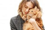 Cani e gatti in corsia: potranno fare visita ai padroni ricoverati
