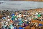 """Lo shampoo """"di plastica"""", arriva il flacone fatto con i rifiuti delle spiagge"""