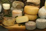 Accordi con i caseifici per produrre formaggi con latte siciliano