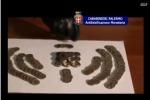 Monete importate dalla Cina: blitz contro falsari con 12 fermi anche a Palermo - Video