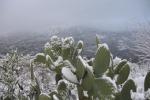 Ondata di freddo in Sicilia: la neve arriva pure sulla costa - Video