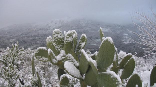 freddo, meteo, neve, Sicilia, Sicilia, Cronaca