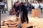 Sculture realizzate con la motosega, le opere di due taglialegna in Toscana - Il video