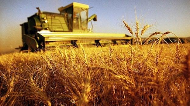 agricoltura sicilia, Sicilia, Economia