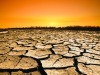 Il Sud Italia rischia la desertificazione, la Sicilia è la più colpita