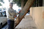 Palermo, abbandonata tra i rifiuti anche una coppia di servizi igienici. Potature a rilento, ecco dove