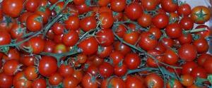"""Ortaggi """"svenduti"""", agricoltori esasperati: proteste in Sicilia"""