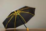 """Arriva l'ombrello in plastica """"Ginkgo"""", ripararsi dalla pioggia non è mai stato così... rivoluzionario - Foto"""