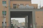 Travolto da un'auto pirata davanti al mercato ortofrutticolo di Palermo, grave un pedone