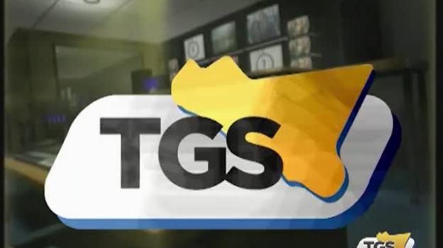 I servizi di TGS