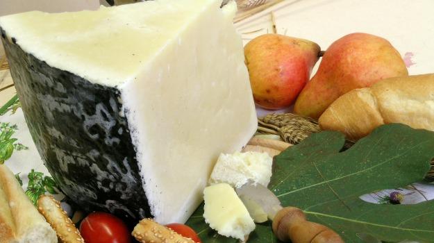 coldiretti, formaggio, pecorino, prezzi, Sicilia, Economia