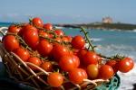 """""""Comuni Amici"""", i prodotti tipici di Pachino in mostra al porto di Catania"""