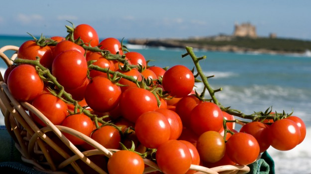 comuni amici, Pachino, porto di catania, turismo, Siracusa, Economia