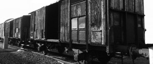 """""""Ricostruire la memoria. La Shoah nella letteratura"""", Giarre ricorda l'olocausto"""