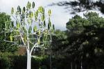 A Parigi l'energia eolica si fa bella, arriva l'Albero a Vento