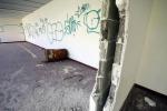 Campetti Opian dello Zen, volontari recuperano gli spazi degradati