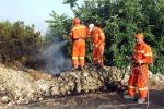 Piano per i forestali: stop a stabilizzazioni e nuove assunzioni