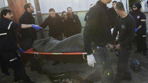 Attacco terroristico autobus, Israele, Tel Aviv, Sicilia, Mondo