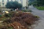 Stop alla ramaglie abbandonate, Rap sistema scarrabili a Palermo