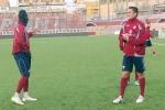 Trapani calcio, Perticone lascia: andrà a Cesena