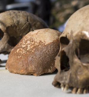 Comiso, un cranio del 1700 torna nella chiesa dei Cappuccini