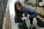 Le adozioni dei cani a distanza: l'iniziativa tra i banchi di scuola