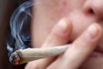"""Cannabis, Cantone: """"Per certi aspetti favorevole alla legalizzazione"""""""