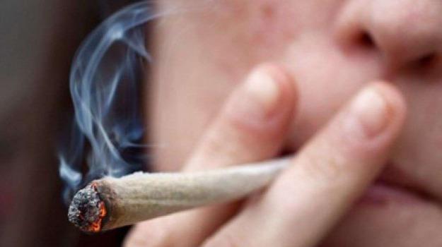 camera, cannabis, ddl cannabis, legalizzazione, parlamento, rinvio a settembre, Sicilia, Politica
