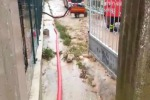 Maltempo in Sicilia, frana colpisce Campofiorito - Video