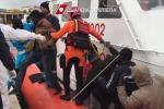 Il tragico naufragio di Lampedusa, medaglia d'oro al valore per un vigile del fuoco