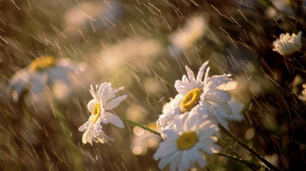 meteo primo maggio, previsioni del tempo, Sicilia, Meteo