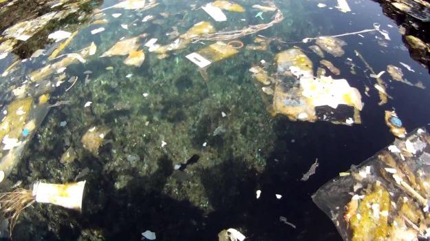 Greenpeace, plastica mare, Sicilia, Società