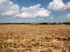 Sicilia a rischio siccità nell'estate 2021: disponibilità d'acqua inferiore allo scorso anno