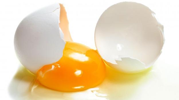 colesterolo, uovo, Sicilia, Società