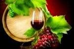 In Sicilia una vendemmia da record, superata la media nazionale . Ecco i vitigni più coltivati