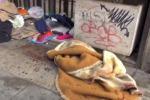 Clochard picchiato a sangue a Palermo: il luogo dell'aggressione - Video