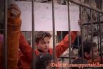 """""""Basta uccidere"""", la provocazione dei bimbi in gabbia in Libia"""