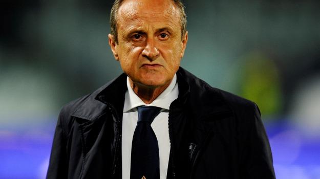 allenatore, Calcio, lazio, Palermo, rosanero, Delio Rossi, Palermo, Calcio