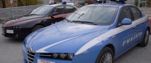 Viveva in casa con 20 gatti: polizia, vigili e carabinieri in azione