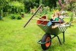 Giardino, ecco gli errori da evitare per la cura delle piante