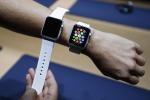 """Ecco Apple Watch, orologio smart con il debole per il lusso. Cook: """"Lo sogno da tanto"""""""