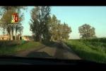 Fermata una corsa di cavalli clandestina a Catania: denunciate 4 persone - Video