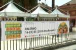 Biodiversità, boom di visitatori all'Orto Botanico di Palermo - Il video