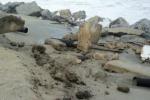 Allarme per l'erosione delle coste a Messina