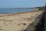 Due infrazioni ogni chilometro di costa: Sicilia sul podio delle illegalità