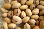 """Cracolici: """"Ricerca contro i parassiti del pistacchio nell'Agrigentino"""""""