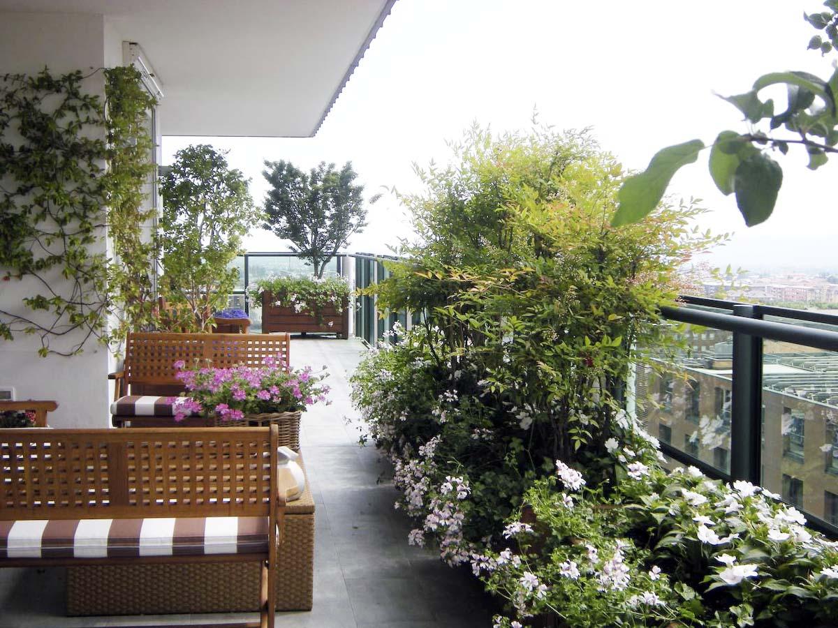 Giardini sui terrazzi bt53 pineglen - Terrazzo giardino ...