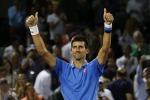 Parigi, troppo forti Djokovic e Williams: battuti Nadal ed Errani